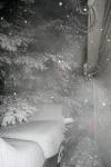 snow pics, 018