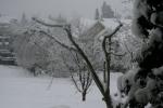 snow pics, 082