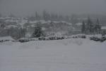 snow pics, 087
