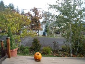 October 31 2009 015